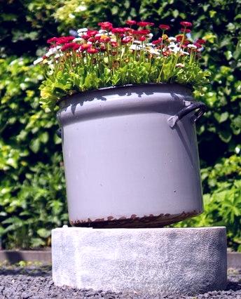 Une marmite upcyclée en pot de fleurs, slow décoration - upcycling, réutilisation d'objet