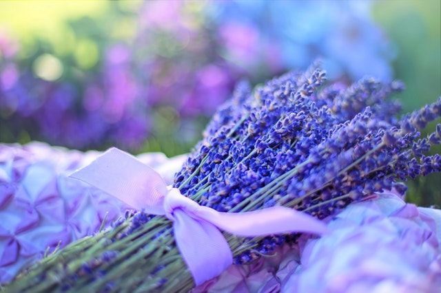 Bouquet de lavande, fleurs d'été, fleurs bio, fleurs écoresponsables, de saison, pour une décoration naturelle, écologique, saine, slow deco